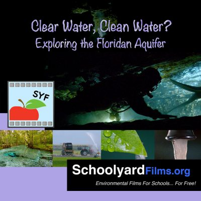 Square Album Art Still of the Schoolyard Film, Clear Water, Clean Water? - Exploring the Floridan Aquifer