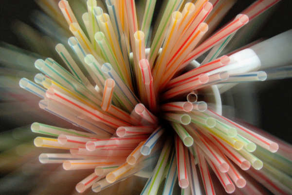 photo of group of straws