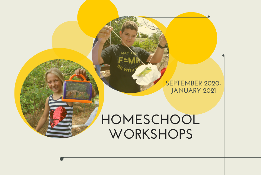 Homeschool workshop image
